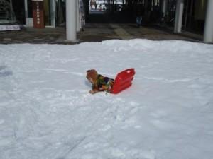 雪あそび2