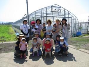 野菜記念写真12